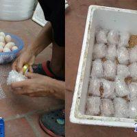 Đóng gói trứng gà chọi