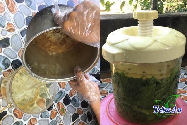 Làm dưa cải muối
